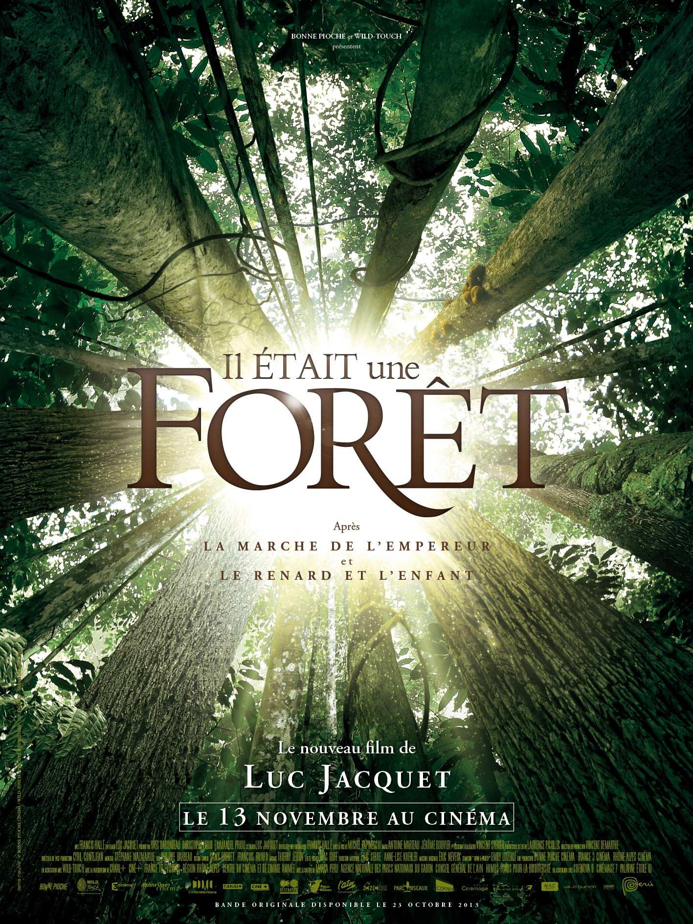 il était une foret de Luc Jacquet // www.sweetberry.fr