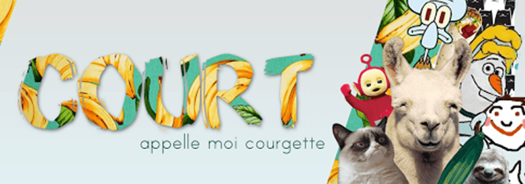 Court, chaîne youtube que j'aime #4 // www.sweetberry.fr